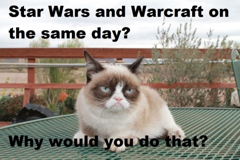 Angry-Cat-SW